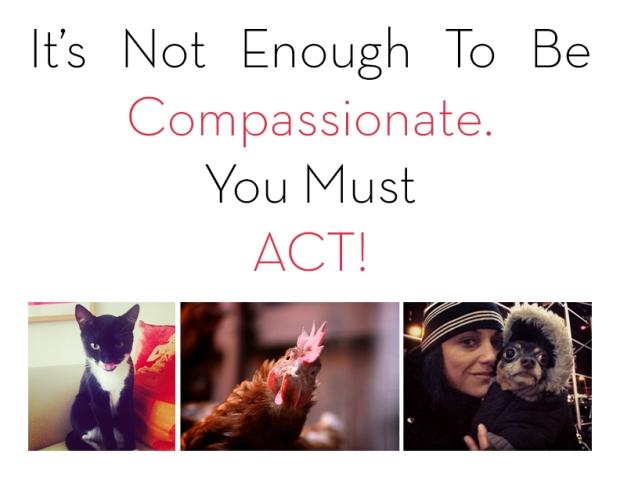 donna compassion